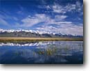 Stock photo. Caption: Cirrus clouds above the Ruby Mountains   from slough along Franklin Lake UX Ranch,  Ruby Valley Great Basin,  Nevada -- united states america landscape landscapes peaks spring lake lakes reflection reflections dramatic cloud formations range snowcapped ranges desert deserts marshes marsh wetlands wetland mountain habitat habitats