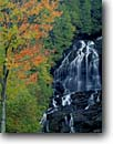 Stock photo. Caption: Sugar maples and Beaver Brook Falls Beaver Brook Coos County New Hampshire,  New England -- waterfall waterfalls creek creeks stream streams parks fall autumn color colors cloudy united states america northeast northeastern parks cascade cascades maple water flowing lacy lacey delicate foliage sweet england scenic scenics