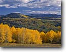 Stock photo. Caption: Aspens and Canjilon Mountain  from Highway 64 Tierra Amarillo Grant Tusas Mountains Colorado Plateau, New Mexico -- forests plateaus tree trees fall autumn colors color united states america landscape landscapes pine aspen expansive scenic scenics vista vistas balance stunning distance majestic yellow distance evolution time foliage scenics scenic