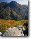 Stock photo. Caption: Linville Gorge and Hawksbill Mountain Linville Gorge Wilderness Pisgah  National Forest Blue Ridge Mountains,  North Carolina -- appalachia united america park southern appalachian states  trees mountain landscapes landscape travel tourist destination destinations autumn color fall color foliage clear sunny blue skies distance wildernesses area areas