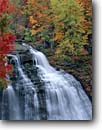 Stock photo. Caption: Brandywine Falls Brandywine Creek Cuyahoga Valley National Park Summit County,  Ohio -- falling water lacey waterfall waterfalls maple maples fall autumn parks midwest midwestern tree trees tourist attraction attractions destination destinations travel foliage tiered cascading freedom pride luxurious landmark landmarks scenic scenics time