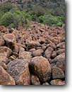 Stock photo. Caption: Granite boulders on the flank  of Mount Scott Wichita Mountains Wildlife Refuge Comanche County,  Oklahoma -- spring parks west western landscapes landscape travel tourist destination destinations scenic scenics attractions attraction granitic erosion refuges habitat protected national large boulder rocks rockslide spring solid