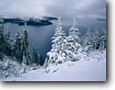 Stock photo. Caption: Mountain hemlocks   and Wizard Island Crater Lake National Park Cascade Range, Oregon -- trees tree hemlock lakes parks mountains ranges snow snowfall winter cold freezing fresh cloudy storm stormy wintery landscape landscapes pristine tourist destination destinations calm cascades covered islands scenic scenics crisp