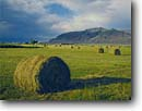 Stock photo. Caption: Rolled hay in Warner Valley   and Warner Peak Lake County High Desert,  Oregon -- deserts united states america west western water remote arid summer  range habitat ranching ranch field bale bales farm farming harvest harvesting farms ranches ranch rural agriculture family landscapes landscape clouds storm great basin buildings
