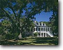 Stock photo. Caption: Antebellum Mansion Headquarters Ace Basin Colleton County, South Carolina -- united states america east eastern southeast southeastern atlantic building buildings historic historical classic mansions heritage history garden splendor architectural american castle ornate grand grandeur  castles tree trees sunny clear mansions