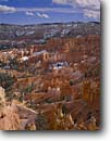Stock photo. Caption: Bryce amphitheater   from Sunset Point Bryce Canyon National Park Colorado Plateau,  Utah -- united states america sandstone parks red rock country landscape landscapes travel tourist destination destinations solitude tenacity plateaus spire spires hoodoo hoodoos snow snowfall canyons winter storm fresh wintery Paunsaugunt