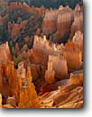 Stock photo. Caption: Bryce amphitheater   from Sunset Point Bryce Canyon National Park Colorado Plateau, Utah -- united states america canyons country sandstone parks landscape landscapes tourist destination destinations eroded erosion desert deserts rock parks orange light vista vistas views view overlook overlooks spires attractions attraction family vacation