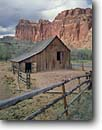 Stock photo. Caption: The Gifford Barn Fruita Capitol Reef National Park Colorado Plateau,  Utah -- canyon country parks southwest landscape landscapes rock canyons fences fence barns homestead homesteads ranching historic historical ranch pastoral rural isolation determination determined  adversity cultural building buildings resources morman settlers