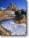Stock photo. Caption: Snow and basalt boulders on sandstone   below  Pectol