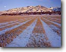 Stock photo. Caption: Grain stubble in winter   and Bear River Range   near Richmond,  Cache Valley Great Basin,  Utah -- united states frost winter icey frosty freezing frozen ranch ranching moon moons lines linear mowed grains fields field balance balanced landscape landscapes artistic nature sunny blue skies clear harvested harvest agriculture mountains scene scenics