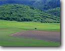 Stock photo. Caption: Fields and tractor below Wellsville Mountains Cache County Great Basin, Utah --   united states america agriculture crop crops field fields tractors plow plowing rows planting farming spring green hills bountiful hay pastoral rural agricultural farm ranch ranches landscape landscapes