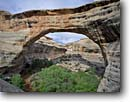 Stock photo. Caption: Sipapu Natural Bridge White Canyon  Natural Bridges National Monument Colorado Plateau,  Utah -- monuments canyon canyons slickrock erosion arch arches natural rock country hiking destination destination strong strength window massive hole landscape landscapes scenics scenic looking through extreme spring sunny indian sacred native american