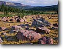Stock photo. Caption: Glacier deposited quartzite boulders at the head of Yellowstone Creek drainage Uinta Mountains, High Uintas Wilderness Ashley National Forest,  Utah -- united states america rocky rockies  creeks stream streams subalpine summer national headwater country backcountry headwaters wildernesses backcountry  scene scenic scenics highcountry alpine glacier caused