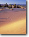 Stock photo. Caption: Sand dunes in evening light Moquith Mountain Moquith Mountain BLM Wilderness Colorado Plateau,  Utah -- united states dune sandy plateaus wildernesses bureau land management smooth soft summer landscape landscapes scenic scenics scene blue skies clear sunny