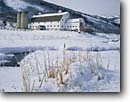 Stock photo. Caption: Cattails and dairy farm Osguthorpe outskirts of Park City Wasatch Mountains, Utah -- mcpolin barns winter rural snow fence snowy roof white mountain ranch ranches ranching country countryside quaint fences cold tree trees blue skies clear americana united states farms farming landscape landscapes scenic scenics scene building buildings