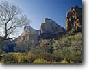 Stock photo. Caption: Court of the Patriarchs   from Zion Canyon Zion National Park Colorado Plateau,  Utah -- tree trees slickrock sandstone fall autumn country parks redrock rock landscape landscapes tourist travel destination destinations deserts desert color maple navajo cottonwoods family vacation sunny blue skies clear scenics scenic imposing monoliths