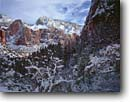 Stock photo. Caption: Winter snowstorm   in Zion Canyon Zion National Park Colorado Plateau,  Utah -- travel valley valleys landscape landscapes scenic scene scenes fresh snowfall cold wintery parks canyons destination destinations tourist attraction attractions