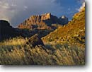 Stock photo. Caption: The West Temple and Mt. Kinesava   from Zion Canyon near Springdale Colorado Plateau, Utah -- united states america landscape landscapes scenic scenics scene parks classic view views icon landmark landmarks canyon country plateaus sandstone autumn fall creeks dramatic clouds looming wild spiritual freedom time grasslands quiet famous places place