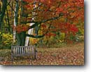 Stock photo. Caption: Twin Ponds Farm West River Valley Vermont New England -- autumn nostalgia nostalgic northeast northeastern united states restful fall inviting peaceful harmony hope backroads backroad travel leaves bench benches restful path pathway landscape landscapes scenics scenic scenes rest places relaxing relax