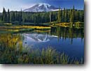 Stock photo. Caption: Mount Rainier from Reflection Lakes Mt. Rainier National Park Cascade Range, Washington -- united states america peak snow  pond tranquil parks mountains ponds lakes mountain peaks reflections volcano volcanos volcanoes ranges balance landscape landscapes tourist destination destinations perfect fall ayumn clear sunny blue skies scenic scenics