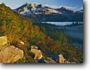 Stock photo. Caption: Mountain-ash and Mt. Rainier    from The Bench Mt. Rainier National Park Cascade Range, Washington -- peak tranquil parks mountains mountain peaks volcano volcanos volcanoes ranges balance landscape landscapes tourist travel destination destinations fall autumn color color colour colours cascades sunny clear blue skies snow wild native plants plant
