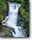 Stock photo. Caption: Falls on Deer Creek Ohanapecosh River Canyon Mount Rainier National Park Cascade Range, Washington -- creeks waterfall waterfalls forests mountains pacific northwest northwestern united states america temperate forest rainforests stream streams cascades moss mossy water flowing clean clear refreshing energy time exposure exposures large remote