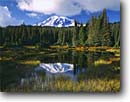 Stock photo. Caption: Mount Rainier   from Reflection Lakes Mt. Rainier National Park Cascade Range, Washington -- peak snow reflection pond tranquil parks mountains ponds lakes mountain peaks reflections volcano volcanos volcanoes ranges balance landscape landscapes tourist destination destinations fall autumn color colors perfect sunny clear blue skies snow covered
