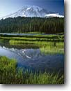 Stock photo. Caption: Reflection Lakes   and Mount Rainier Mount Rainier National Park Cascade Range,  Washington -- peak snow reflection pond tranquil parks mountains ponds lake mountain peaks reflections volcano volcanos volcanoes ranges balance landscape landscapes tourist destination destinations summer cascades glacier reflection sunny clear blue skies snow calm