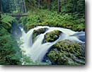 Stock photo. Caption: Sol Duc Falls Sol Duc River Olympic National Park Olympic Peninsula, Washington -- america landscape landscapes west parks scenic scenics scene cascades rivers western summer waterfalls waterfall destinations destination bridge bridges rainforest rainforests temperate refreshing refresh  fresh habitat world heritage sites site lush
