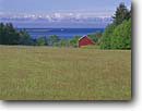 Stock photo. Caption: Red barn on Lopez Island   and Strait of Juan de Fuca San Juan Islands San Juan County,  Washington -- united states america landscape landscapes coast coasts west pacific summer san juans north northern bays building buildings barns pastoral ranch ranching agriculture bucolic ranchland