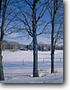 Stock photo. Caption: Farm near Gills Rock Door County Door Peninsula Wisconsin -- united states america barn barns ranching farming snow snowy covered winter building buildings clear sunny blue sky skies trees fence fences distance farms ranches wintery landscape landscapes