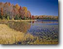 Stock photo. Caption: Mabel Lake County Road B Vilas County Wisconsin -- america landscape landscapes scenic scenics byway byways backroads backroad fall autumn clear blue skies lakes habitat wetland wetlands marsh marshes small quiet alone sweet water