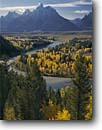 Stock photo. Caption: Snake River and Grand Teton   from Snake River Overlook Grand Teton National Park Rocky Mountains,  Wyoming -- world heritage site sites fall autumn rockies peaks mountain glacial parks landscape landscapes tourist travel destination destinations tree trees color colors tetons rivers meandering rockies peaceful balance range classic scenics scenes famous overlooks