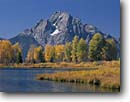 Stock photo. Caption: Beaver pond, Willow Flats   and Mount Moran,  Teton Range Grand Teton National Park Rocky Mountains,  Wyoming -- mountains rivers fall autumn aspens peak peaks range ranges parks landscape landscapes travel tourist destination family vacation colour colours color world heritage site sites sunny blue skies clear water majestic cold eternal evolution habitat scenics