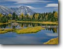 Stock photo. Caption: Beaver pond and Mt. Moran Teton Range Grand Teton National Park Rocky Mountains,  Wyoming -- lakes america united states landscape landscapes parks travel tourist destination destinations tetons fall autumn color colour colours colors serene scenic mount placid rockies  calm sunny clear snow fresh reflection reflections crisp family vacation