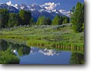 Stock photo. Caption: Unnamed pond and the Grand Teton Snake River Valley Grand Teton National Park Rocky Mountains,  Wyoming -- snow peak aspen range parks trees tree ranges peaks majestic landscape landscapes tourist travel vacation destination destinations rockies tetons serene serenity solitude heritage site sites sunny blue skies clear sagebrush reflection reflections summer