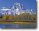 Stock photo. Caption: Aspens and Mt. Moran from Oxbow Bend Snake River Valley Grand Teton National Park Rocky Mountains,  Wyoming -- aspen aspens parks peaks mount range ranges rivers fall autumn color tranquil reflection reflections mountain calm serenity tourist destination destinations landscape landscapes spiritual majestic balance world heritage site sites sunny clear blue skies