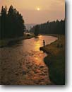 Stock photo. Caption: Fly fishing in smoky light from the fires of 1988 on Nez Perce Creek Yellowstone National Park Rocky Mountains,  Wyoming -- united states america flyfishing fires fisherman summer trees forest mountain outdoor recreation active vacation trout stream streams famous rivers travel tourist recreational fish destination destinations sunsets fish angler anglers angling