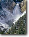 Stock photo. Caption: Lower Falls in winter Grand Canyon of the Yellowstone Yellowstone National Park Rocky Mountains, Wyoming -- world heritage site sites travel destination destinations landscape landscapes rockies scenic scenics family vacation mountain trees freezing frozen cold snow snowy rivers forests waterfall waterfalls landmarks landmark parks covered tree attractions