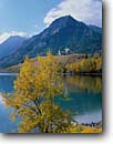 Stock photo. Caption: Black cottonwoods, Middle Waterton Lake   and the Prince of Wales Hotel Waterton Lakes National Park Rocky Mountains,  Alberta,  Canada -- fall autumn tree trees world heritage site parks mountain canadian rockies landscape landscapes tourist destination destinations attraction attractions peak peaks deciduous lakes hotels sunny clear blue skies buildings building lodge lodges alpine chalet