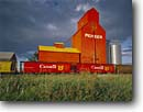 Stock photo. Caption: Grain elevators at sunset Nanton Alberta Canada -- landscape landscapes scenics scenic  agriculture growing growth ranching elevator ranch industry progress harvest harvesting canadian northern grains railroad railroads trains train transport transporting production cars rail