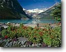 Stock photo. Caption: Lake Louise Banff National Park Rocky Mountains Alberta, Canada -- landscape landscapes scenics scenic lakes landmark landmarks parks mountain glaciers glacial silt turquoise color colour classic view views vista vistas international summer garden gardens landscaped benches bench clear sunny flowers flower canadian