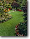 Stock photo. Caption: Sunken Garden The Butchart Gardens Victoria,  Vancouver Island British Columbia,  Canada -- formal public flowers walkway path paths pathway pathways flower fall autumn walkways manicured canadian landscaping gardening lawn lawns floral travel destination destinations tourist tour attraction attractions colorful sweet emotion landscaped flower