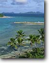 Stock photo. Caption: Coconut palms, Brandy Wine Bay     with Salt, Copper  and Ginger Islands,  Tortola British Virgin Islands -- palm island caribbean tropical destination destinations vacation vacations tourist travel landscape landscapes breathtaking exotic holiday holidays aqua blue private beach beaches romantic getaway secluded paradise azure dream happy winter warm colour