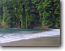 Stock photo. Caption: Tropical rainforest on Uva Point    south of Puerto Viejo Limon Province Costa Rica, Central America -- trees beach beaches caribbean ocean wave waves coastal rainforests tropical forests destination destinations travel tourist warm sunny secluded exotic solitude breathtaking idyllic temperate holiday latin american romantic sandy sand central america