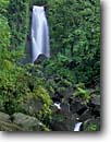 Stock photo. Caption: Trafalgar Falls Morne Trois Pitons National Park,  Dominica Windward Islands -- waterfall lesser antilles waterfalls tropical forest forests creeks creek rivers river caribbean parks tropical destinations destination vacation vacations world heritage site sites tourist travel landscape landscapes scenic winter scenics wild moist