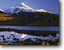 Stock photo. Caption: Mt. Cook from moraine pond Tasman River Valley Southern Alps South Island,  New Zealand -- mount national parks south pacific islands morning light dramatic power powerful snow capped peak peaks creeks grass grasses moraines landscape landscapes mountain mountains glacially glacial glacier glaciers sunny clear blue skies summit summits scenics