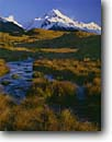 Stock photo. Caption: Mt. Cook from Moraine Creek Tasman River Valley Southern Alps South Island,  New Zealand -- mount national parks south pacific  islands morning light dramatic power powerful snow capped peak peaks creeks grass grasses moraines stream streams brook brooks landscape landscapes mountain mountains scenic scenics sunny blue skies clear cold summits