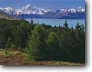 Stock photo. Caption: Lake Pukaki and Mt. Cook   from Peters Lookout Southern Alps South Island,  New Zealand -- mount national parks south pacific  islands morning light dramatic power powerful snow capped peak peaks  moraines landscape landscapes mountain mountains glacially glacial glacier glaciers lakes scenic scenics spring  sunny blue skies clear snowy