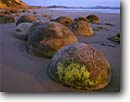 Stock photo. Caption: Moeraki Boulders Moeraki Boulders Scenic Reserve South Pacific Ocean South Island,  New Zealand -- minus tide shore shoreline shorelines travel destination destinations tourist seascape seascapes places rocks polished stone stones beach beaches famous round rounded anthropomorphic turtles turtle unusual formation natural features landmarks landmark
